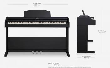 Roland RP102 - Image n°3